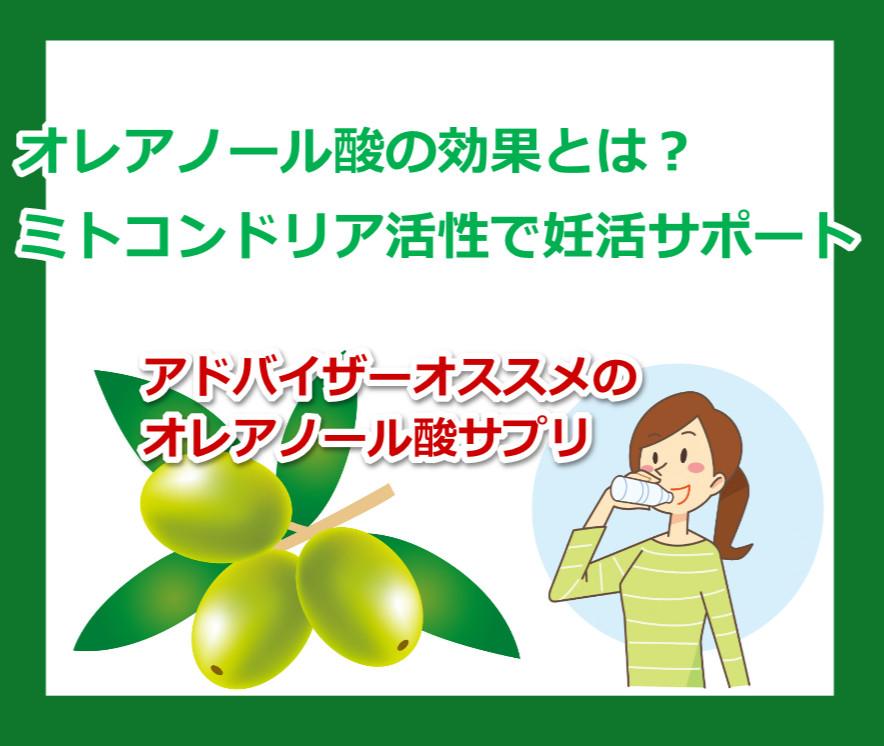 オレアノール酸サプリでミトコンドリアを増やす!妊活にも有効